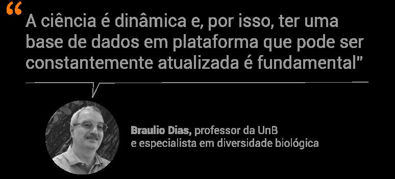 professor Braulio Dias