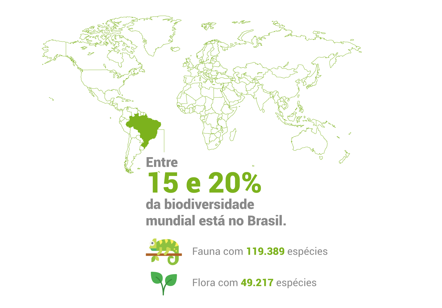Entre 15 e 20% da diversidade biológica mundial está no Brasil