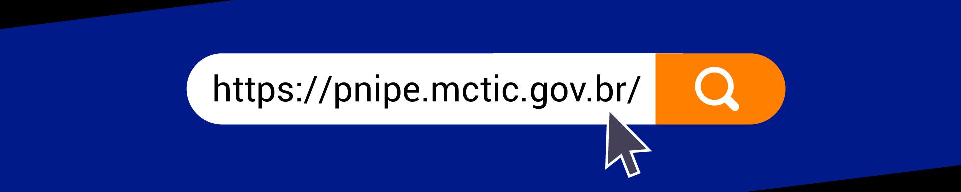 https://pnipe.mctic.gov.br/