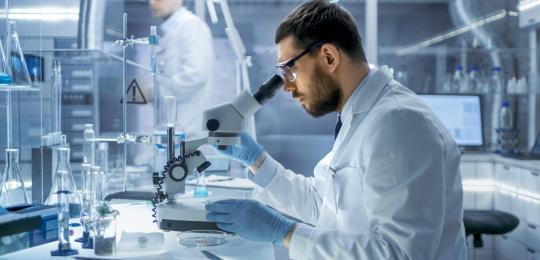 Pesquisadores usam Solidariedade à Pesquisa para impulsionar produção científica no país